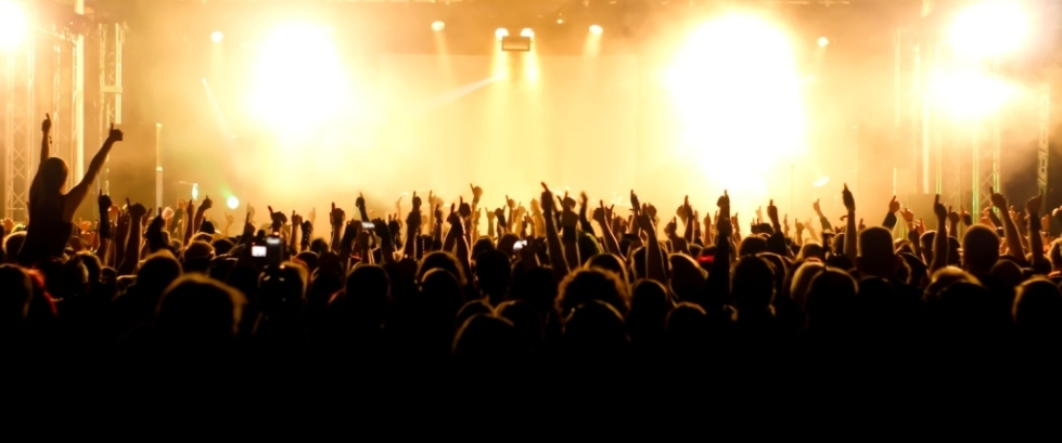 Wide Angle Shot of concert crowd